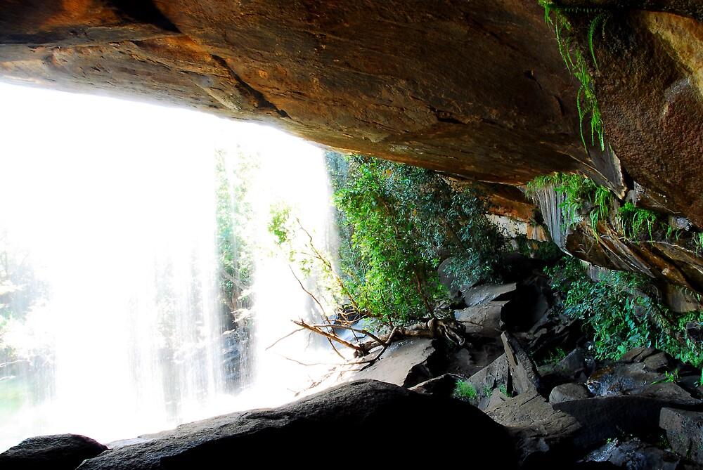 Behind Little Merten's Falls by chriso