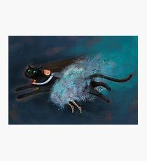 Flying on my cat Photographic Print