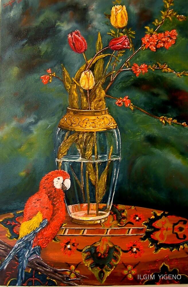 still life with macaw by ILGIM  YiGENO