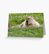 Snoozy capybara  Greeting Card