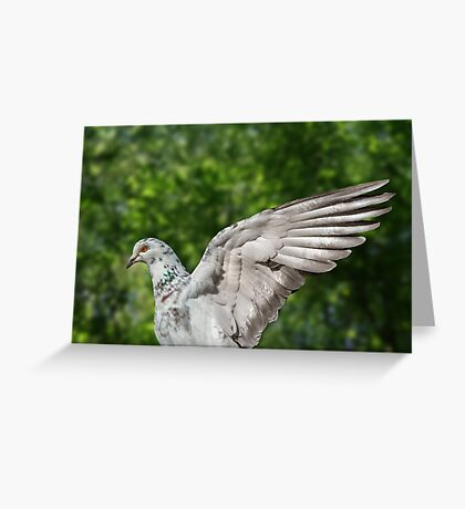 A Wing and a Prayer Greeting Card