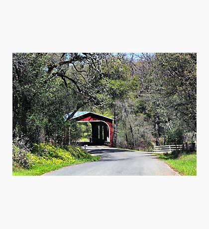 A Country Drive Photographic Print