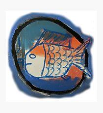 Blue and Orange Fish Photographic Print