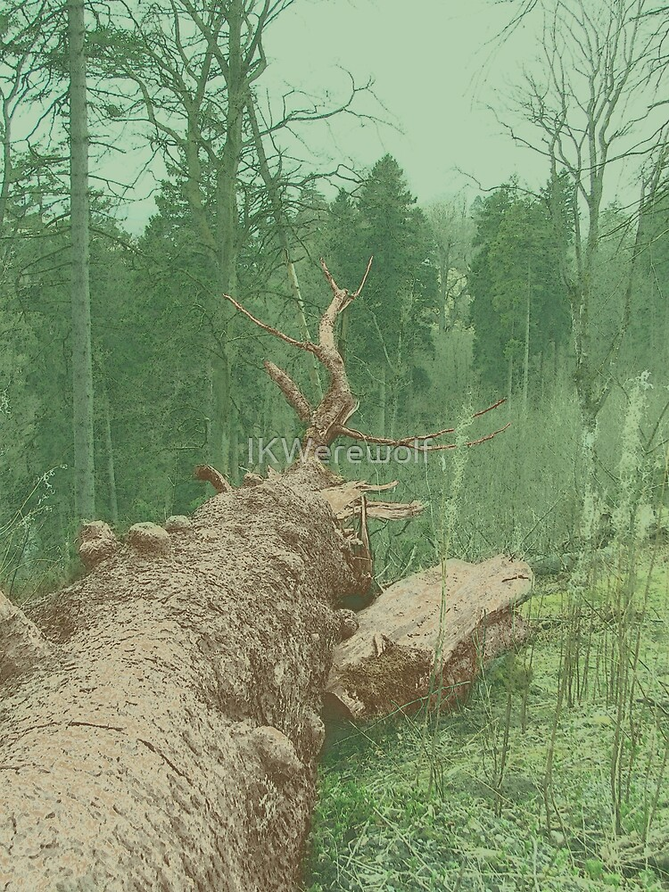 If a tree falls... by IKWerewolf