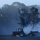 Planting at dusk by ingridewhere