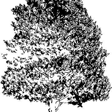 Magnolia by SaraSueEss