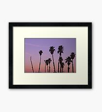 California Palm Trees in a Row during a sunset  Framed Print