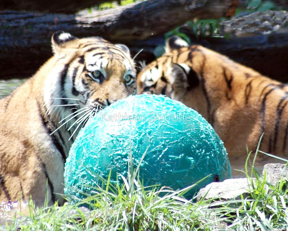 Playing With Ball by Kathleen Struckle