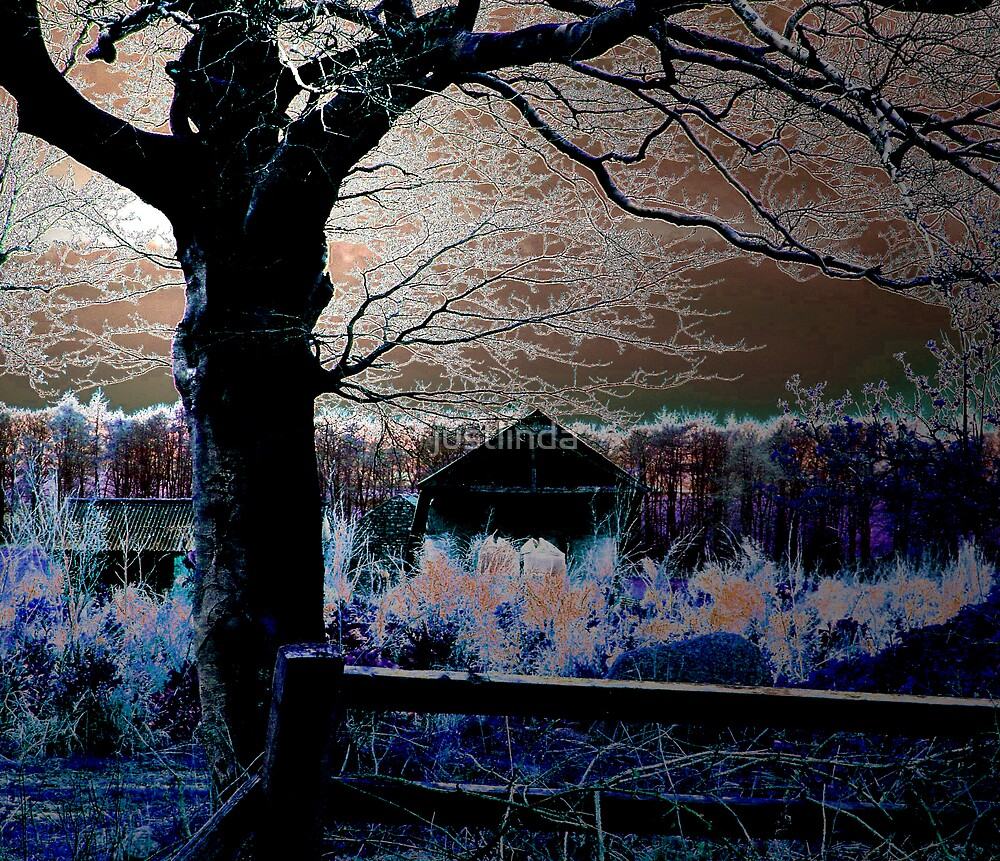 Night by justlinda