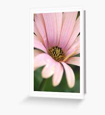 Pink Osteo Greeting Card