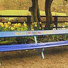 Sit Down at Newby Bridge. by Billlee