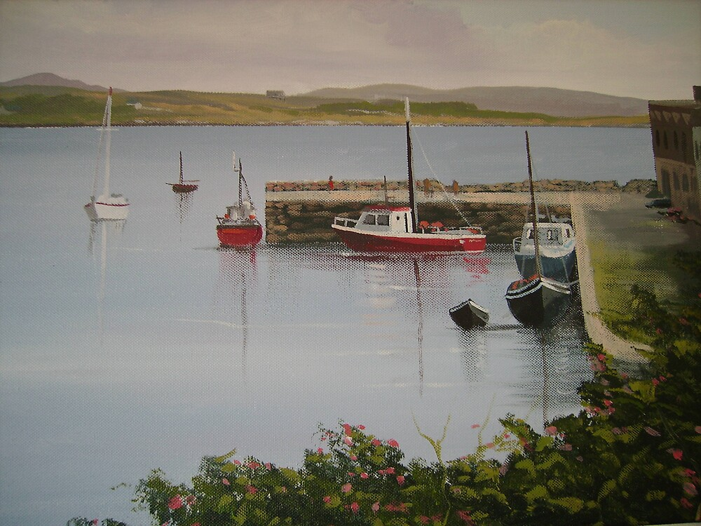 roundstone harbour by cathal  o malley
