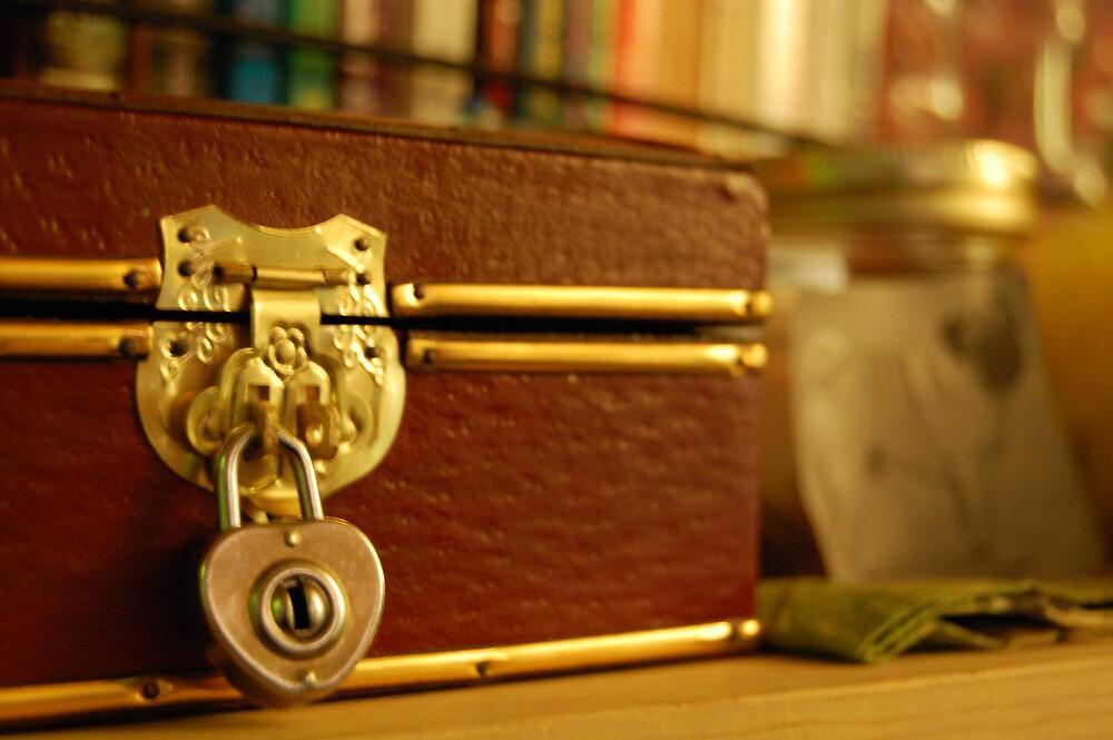 Locked Away by Natalia DiStefano-Hural