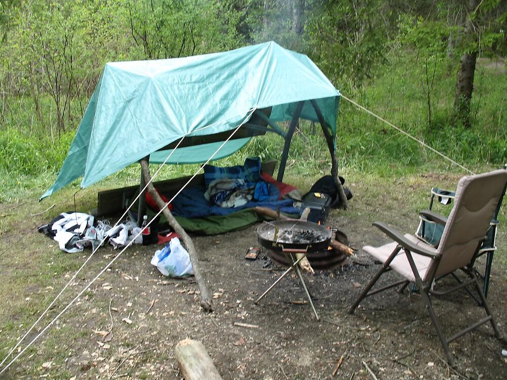 Picnic Bench Shelter by MissCrystal