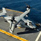 Ein MV-22 Osprey landet an Bord der USS Peleliu. von StocktrekImages