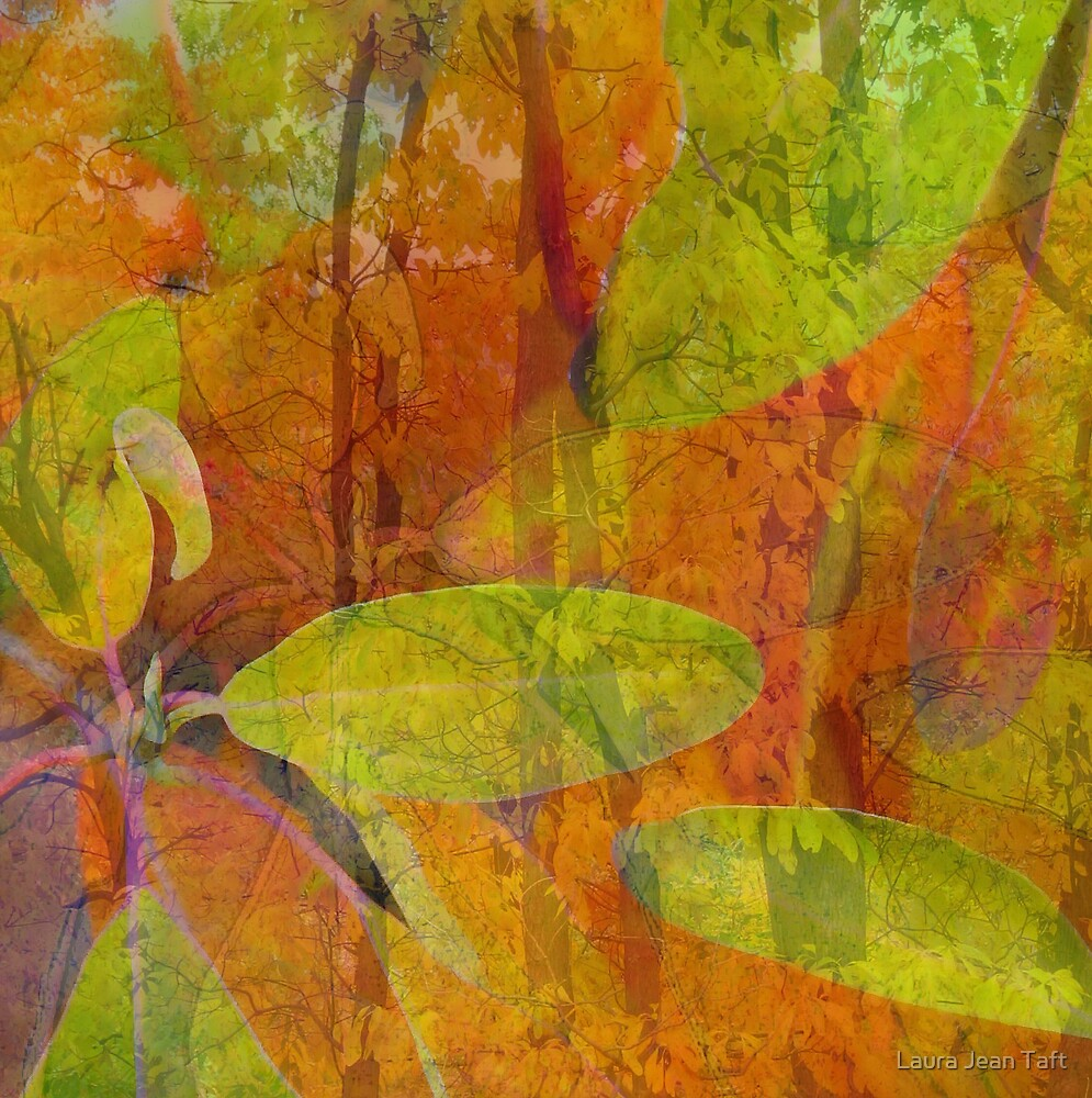 Artistic Woods by Laura Jean Taft