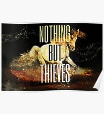 Nothing But Thieves  Poster