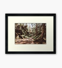 Wild summer Framed Print