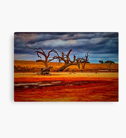 """""""Rusty Lakebed"""" Canvas Print"""