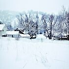 Winter by Neil Johnson