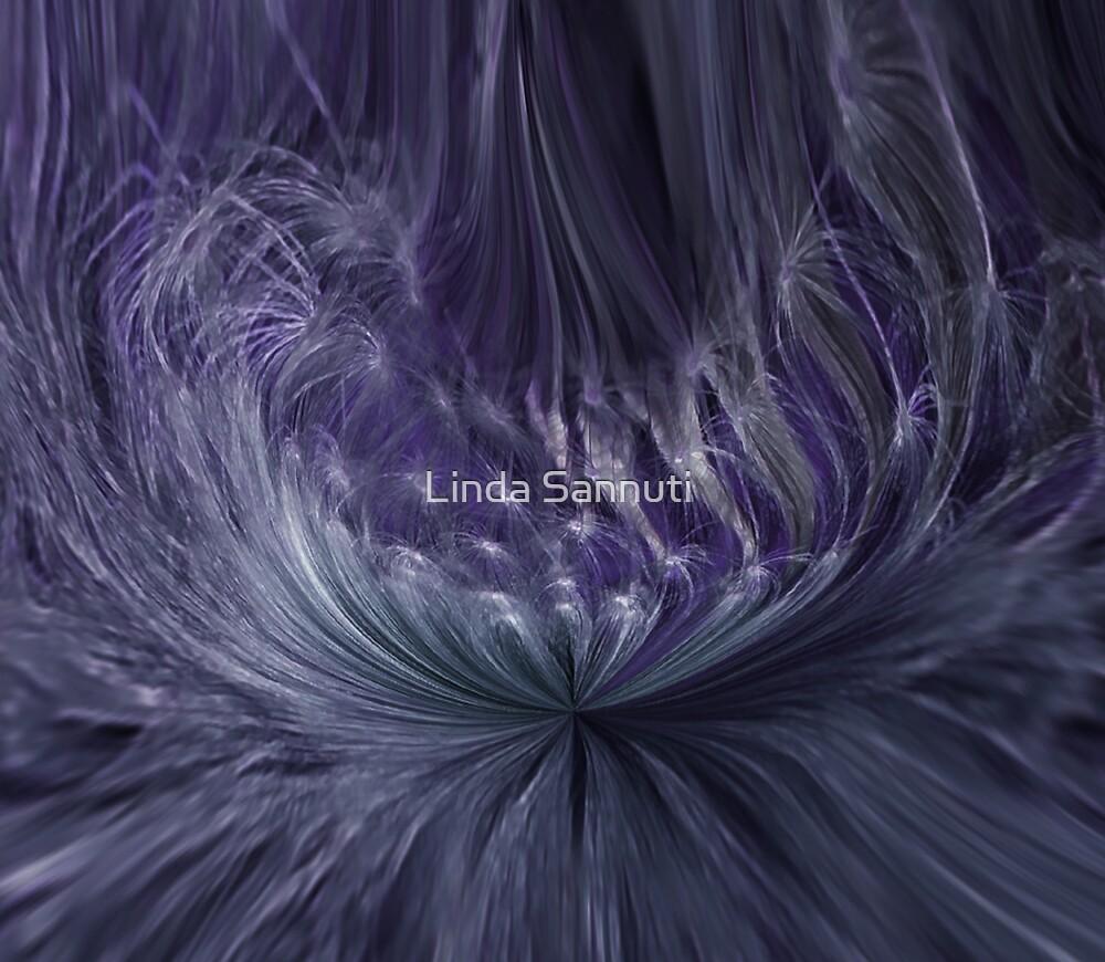 bird feathers  by Linda Sannuti