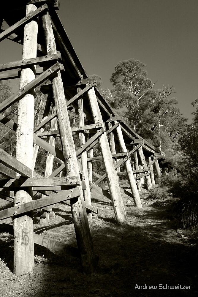 Below the Old Selby Rail Bridge by Andrew Schweitzer
