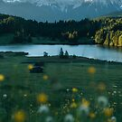 Sunrise at a forest lake under the mountains - landscape photography by Michael Schauer