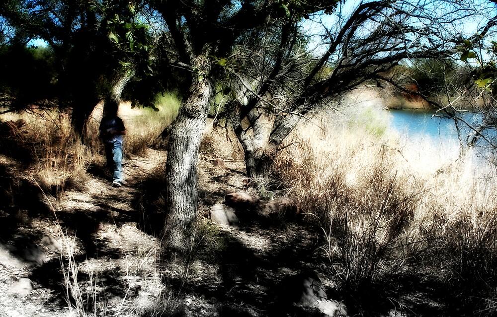 A Boy's Adventure by Trish Mistric