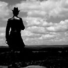 Little round top Gettysburg by Chris Hayworth
