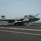 Ein EA-6B Prowler landet auf dem Flugdeck der USS Nimitz. von StocktrekImages