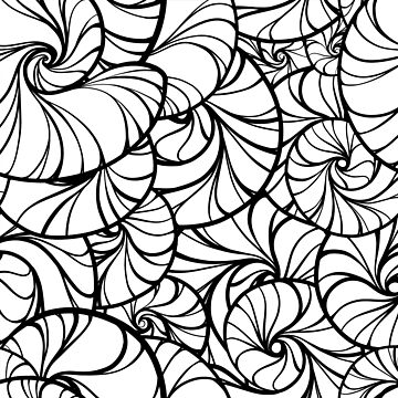 Funky Black and White Nautilus Sea Shell Swirl Pattern by turtlebird