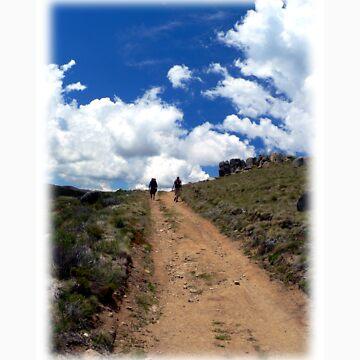 Trail Walking -Take The Road Less Travelled by Neerav