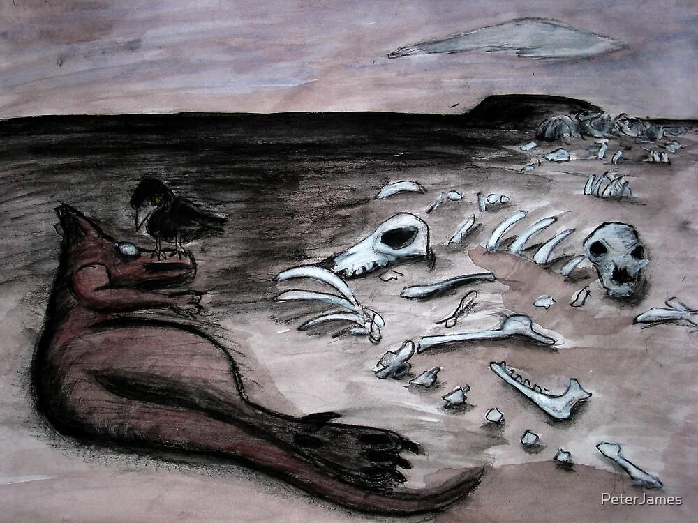 Kangaroo Graveyard by PeterJames