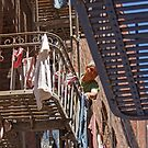 Laundry Day - Chinatown San Francisco California by Buckwhite