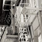 Fire Escape - Chinatown San Francisco California - B&W by Buckwhite