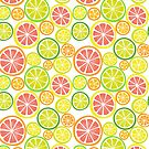 Summer Citrus Fruits by IconicTee