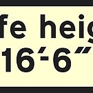 """Safe Height 16'-16"""" by Omar Dakhane"""
