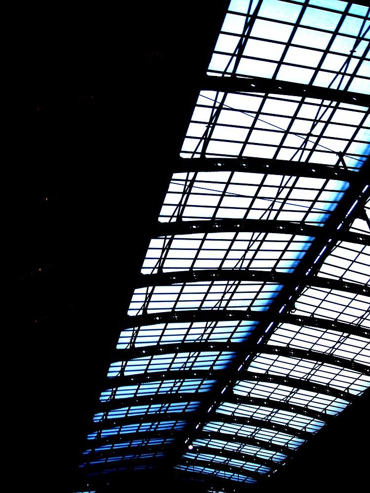 Skylight by Kiera