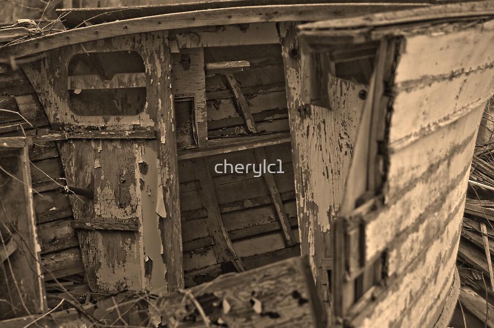 dry docked 2 by cherylc1