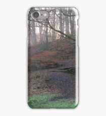 Image twenty two iPhone Case/Skin