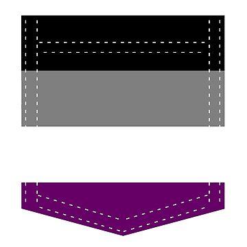 asexual pride flag pocket  by varnel