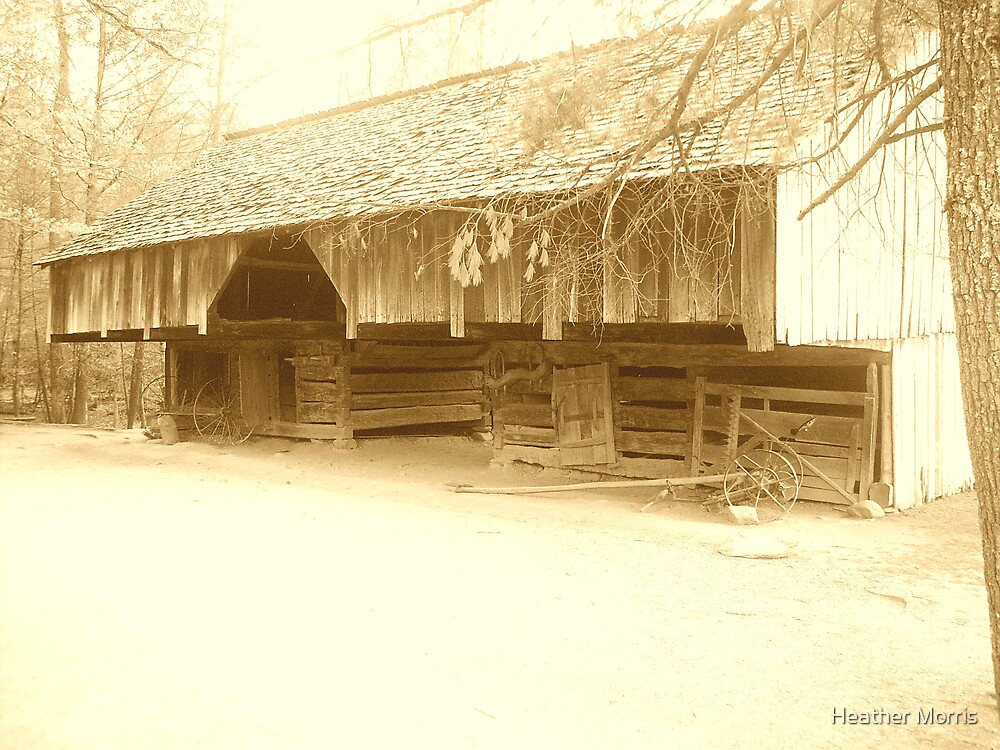 The Barn by Heather Morris