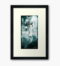 Evolution Framed Print