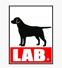 Obey the LAB Photographic Print