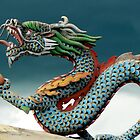 The Dragon of 1001 Buddha's by Tom Meyers