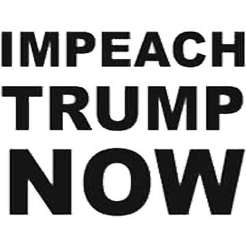 Impeach Trump NOW  by TheBlankVerse