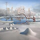 Winter Reflections by Igor Zenin