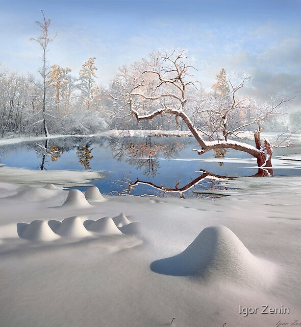 Winter Reflections by Igor Zenin