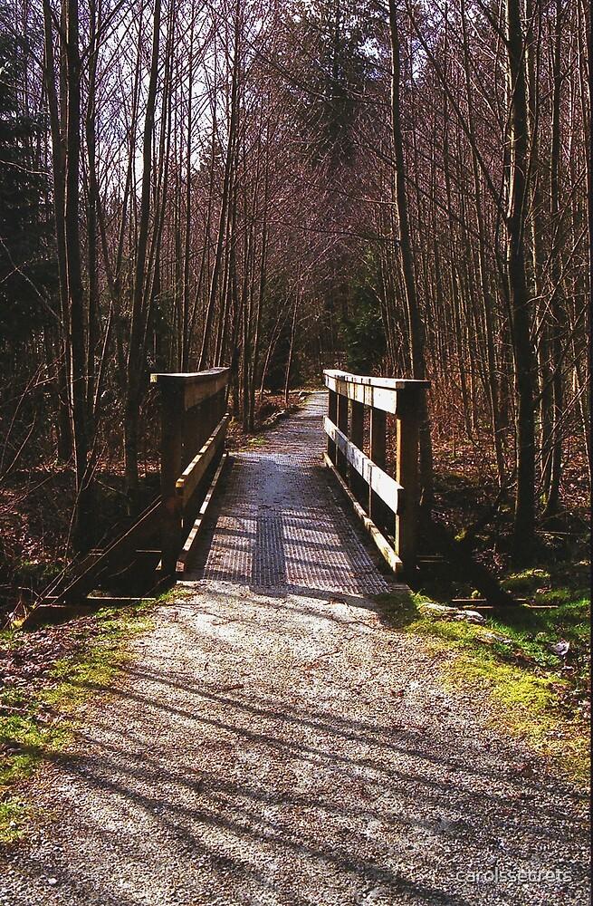 Bridge Over Brook - Print by carolssecrets