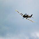 Spitfire  by yampy